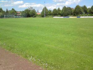 sportplatz_rasen